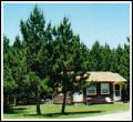 Vacation Cottage and Home rentals in Traverse City.